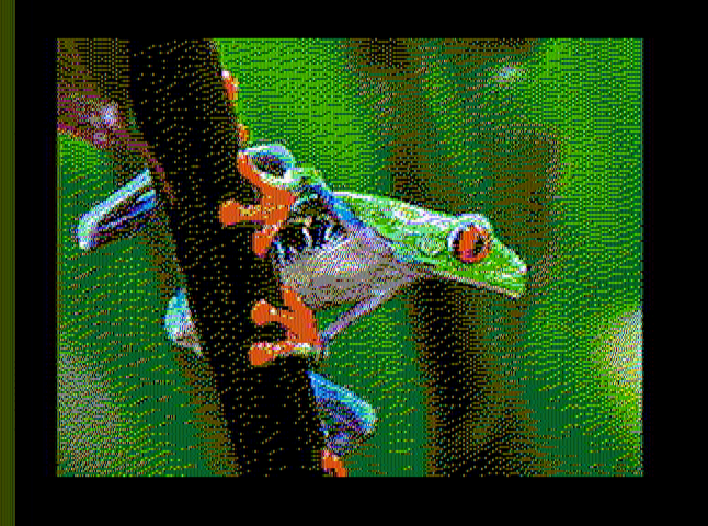treefrog_cropped_out.png
